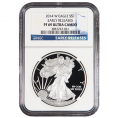 NGC Certified Silver Eagles (PF69UC)
