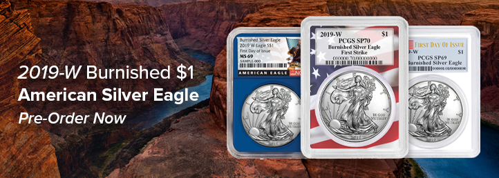 2019-W Burnished $1 American Silver Eagles