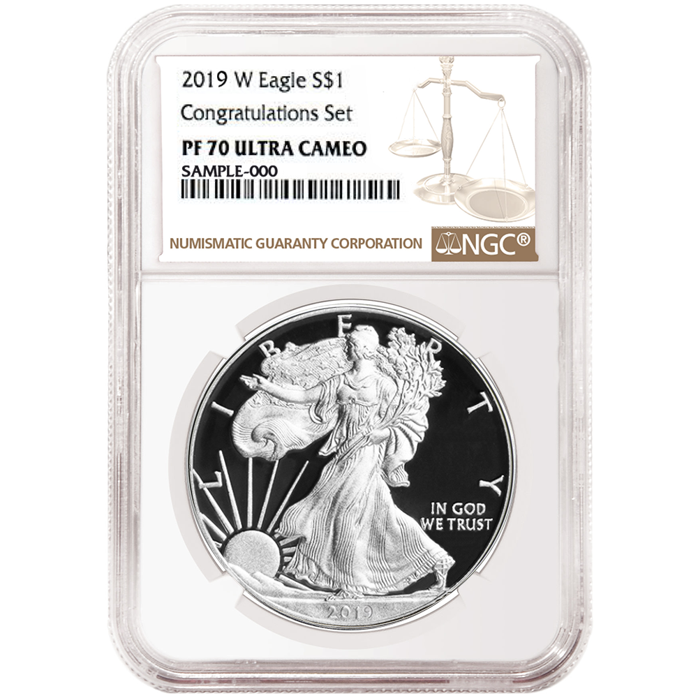 2019 Congratulations Set Silver Proof Eagle in Original Government Packaging